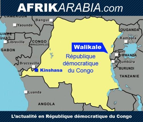 carte RDC Afrikarabia Walikale2.jpg